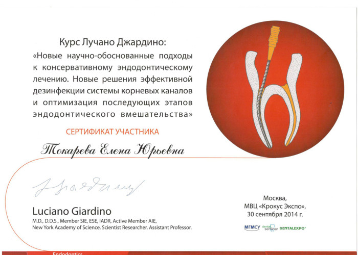 Сертификат успешного прохождения курса